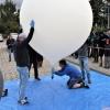 Tuż przed startem balonu z detektorami CosmicWatch (foto: Bartosz Maksiak / NCBJ)